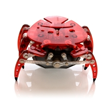 red-crab-front